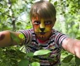 tiger-boys-face-painter