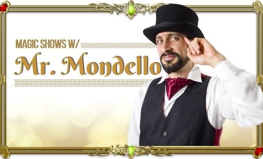 Mr Mondello Kids Magic Shows In Brisbane and Gold Coast Area